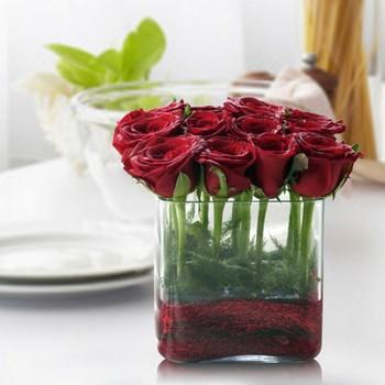 Rose Rustica Gift